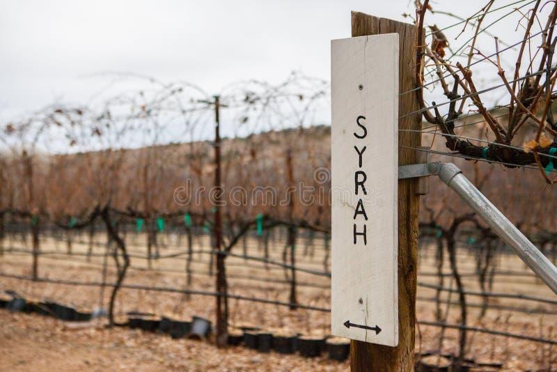 Contrassegno dell'uva dello Syrah immagini stock