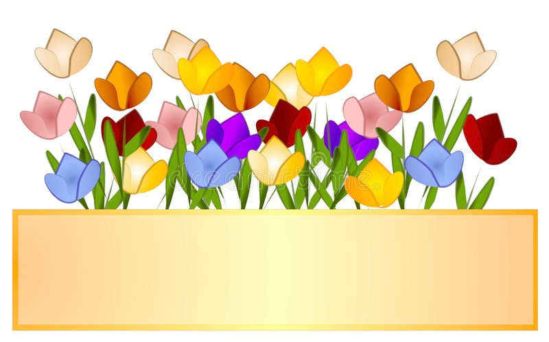 Contrassegno di marchio dei tulipani del giardino del tulipano illustrazione vettoriale