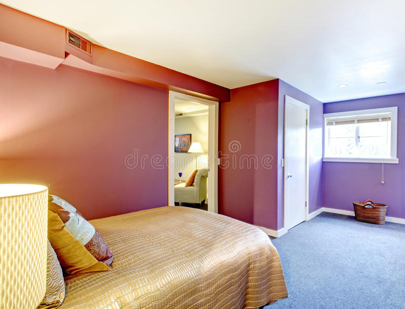 Contrast color bedroom,. Bedroom with purple walls, white ceiling and blue carpet floor. View of the beige bedding with wooden rustic cabinet royalty free stock photo
