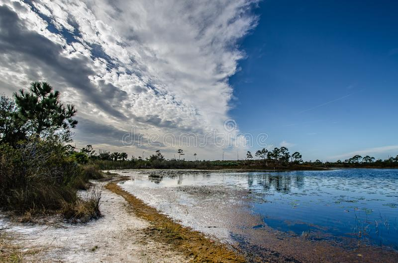 Contrast on Gator Lake. A cloudscape over Gator Lake in the Jonathan Dickinson State Park in Florida as darkening clouds roll across half of the blue sky stock photo