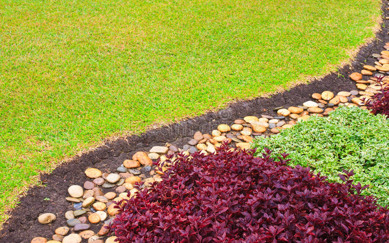 Download Contrast Plants Curved Stock Photography - Image: 19103312