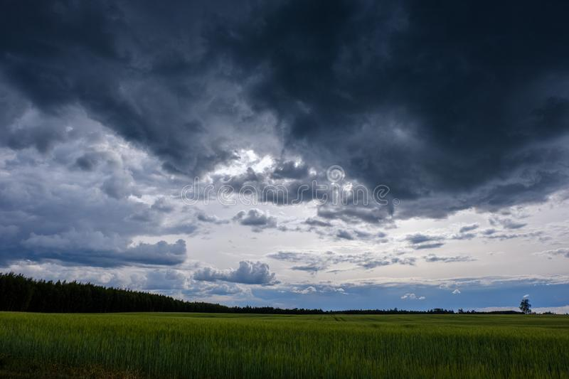 Contrast rain storm clouds over green meadow and some trees in summer. blue sky before the rain royalty free stock images
