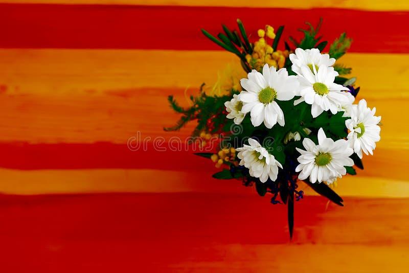 Contraste De Las Flores Fotos de archivo libres de regalías