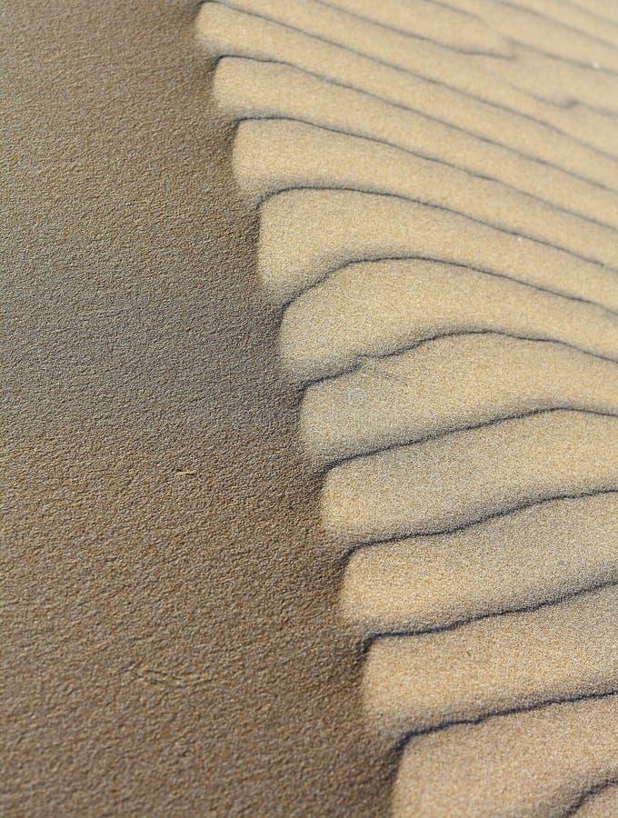 Contraste de sable photos stock