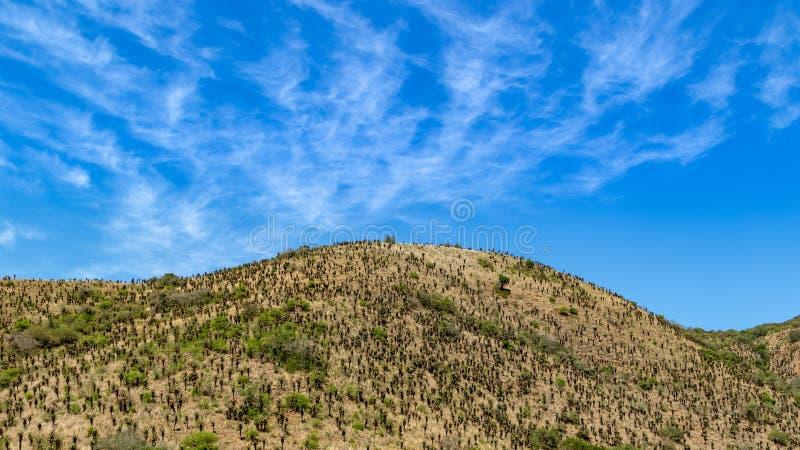 Contraste entre o céu e a terra fotos de stock royalty free