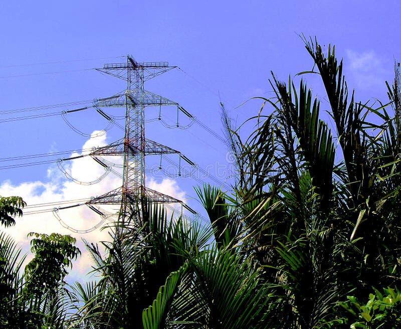 Contrasti del Vietnam Torri e palme ad alta tensione del metallo immagine stock