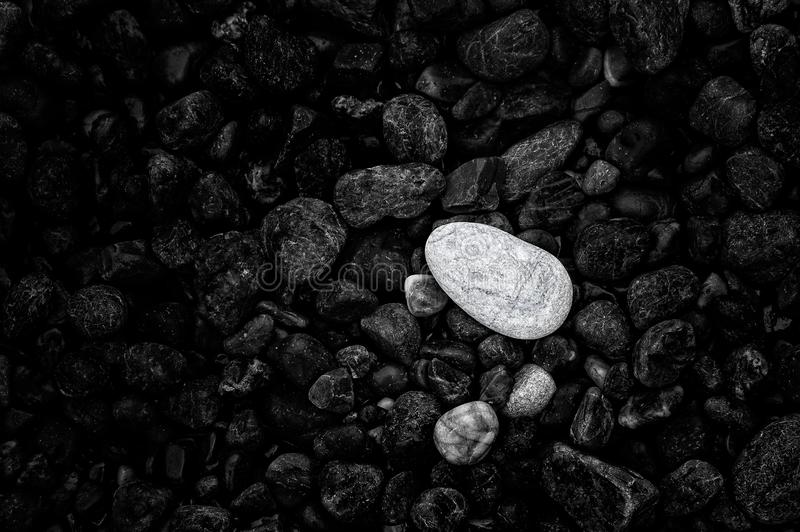 Contrasting black, gray and white rocks on a beach. royalty free stock photo