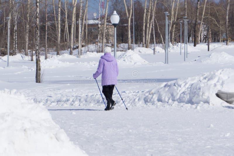Contratan a las personas mayores, personas mayores a los deportes, deportes el caminar, corriendo con los polos de esquí, el cami fotos de archivo libres de regalías