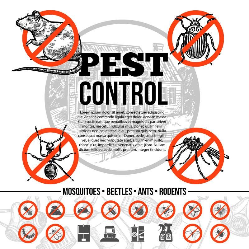 Control de parásito Infographics ilustración del vector
