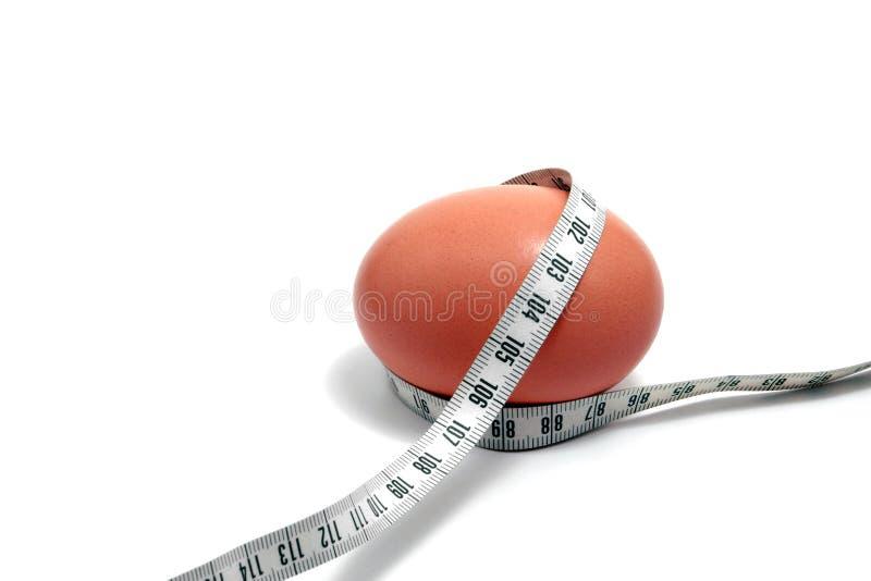 Controle da gordura fotos de stock royalty free