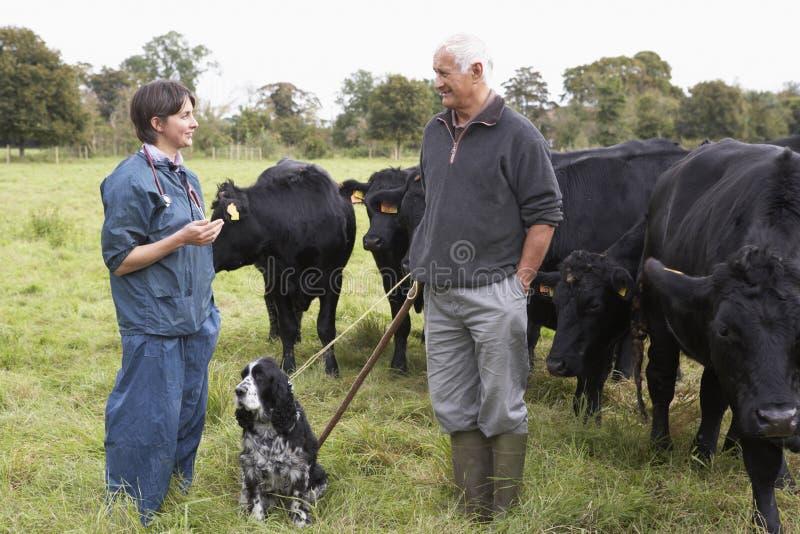 controllare del campo del coltivatore di discussione fotografie stock libere da diritti
