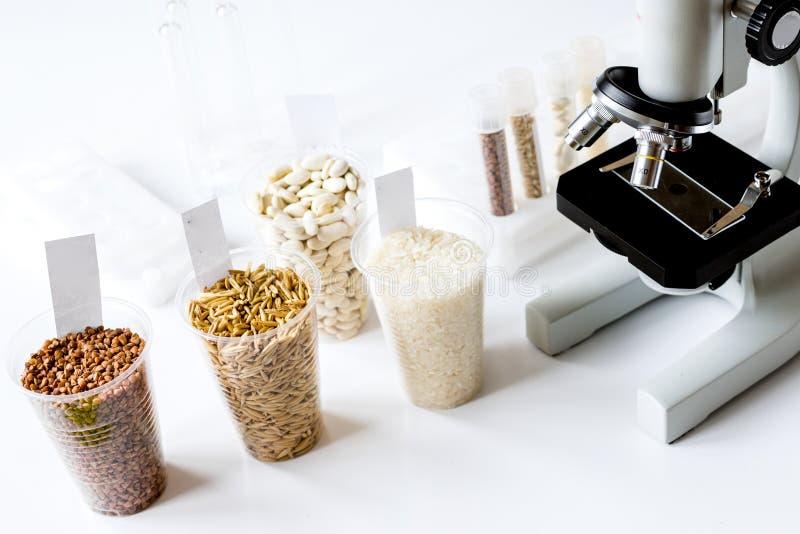 Controllo di qualità dell'alimento in laboratorio nessuno fotografia stock