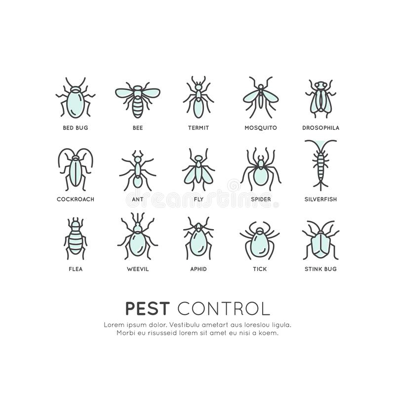Controlo de pragas, higiene de alimento, legislação e autoridade local, proteção do vírus da infecção do perigo ilustração royalty free