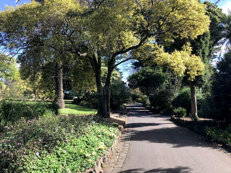 Controverse public sur le parc Footscray 3 image libre de droits