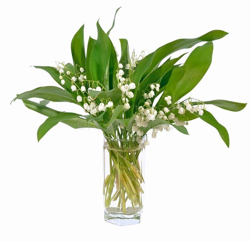 Convallaria majalis kwiatów bukiet w szkle obraz royalty free