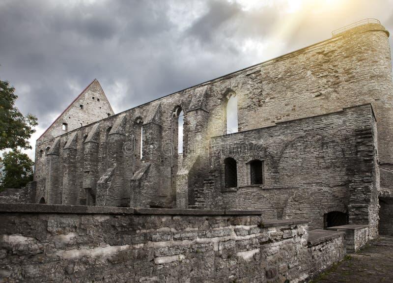 Convento arruinado antigo do St Brigitta 1436 anos na região de Pirita, Tallinn, Estônia imagem de stock