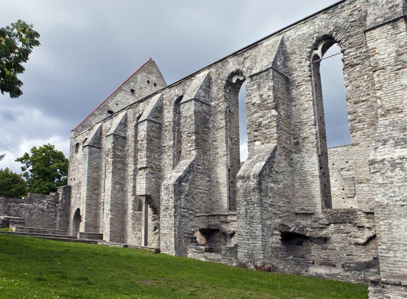 Convento arruinado antigo do St Brigitta 1436 anos na região de Pirita, Tallinn, Estônia imagens de stock