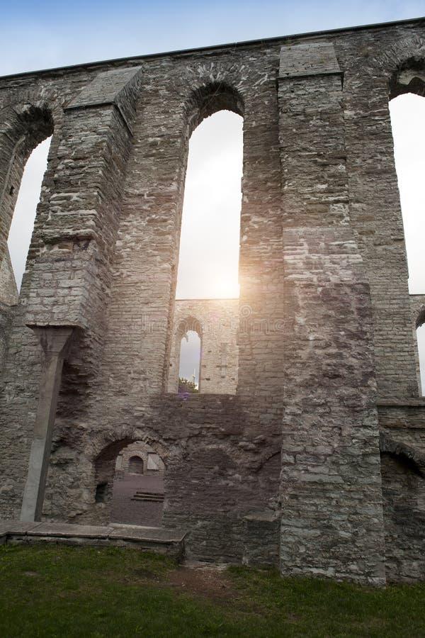 Convento arruinado antigo do St Brigitta 1436 anos na região de Pirita, Tallinn, Estônia fotos de stock royalty free