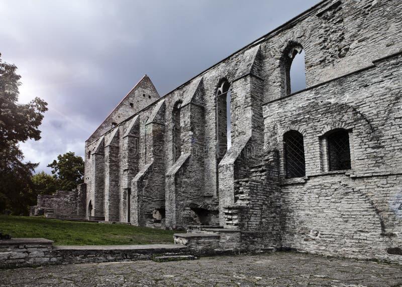 Convento arruinado antigo do St Brigitta 1436 anos na região de Pirita, Tallinn, Estônia imagem de stock royalty free