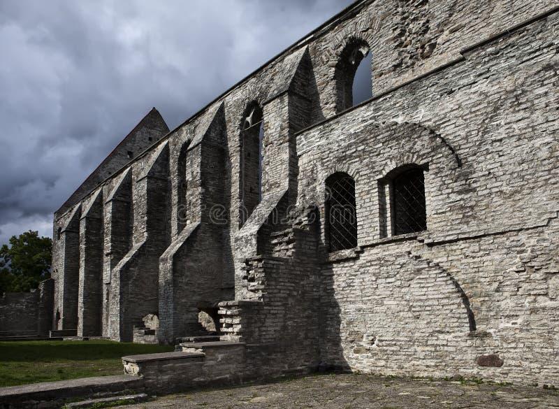 Convento arruinado antigo do St Brigitta 1436 anos na região de Pirita, Tallinn, Estônia fotografia de stock royalty free
