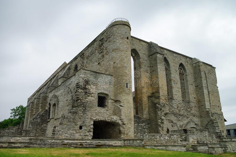 Convento arruinado antigo na região de Pirita, Tallinn do St Brigitta, E imagem de stock
