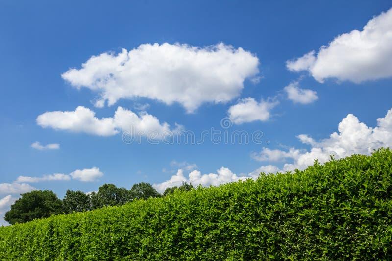 Conversão contra o céu fotos de stock