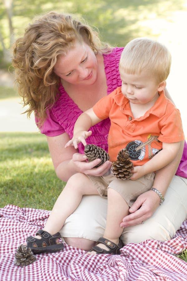 Conversa da matriz e do filho sobre cones do pinho no parque imagem de stock royalty free