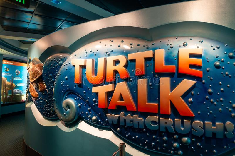Conversa da tartaruga com esmagamento no pavilhão vivo dos mares em EPCOT imagens de stock