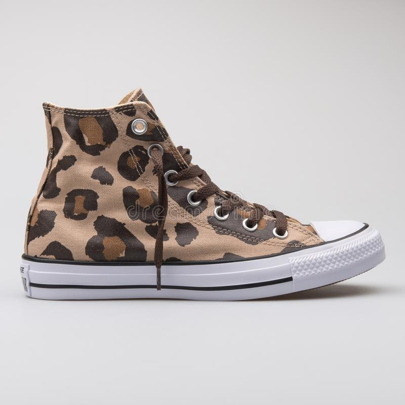 Converse Chuck Taylor All Star high vintage khaki and dark chocolate sneaker stock photography