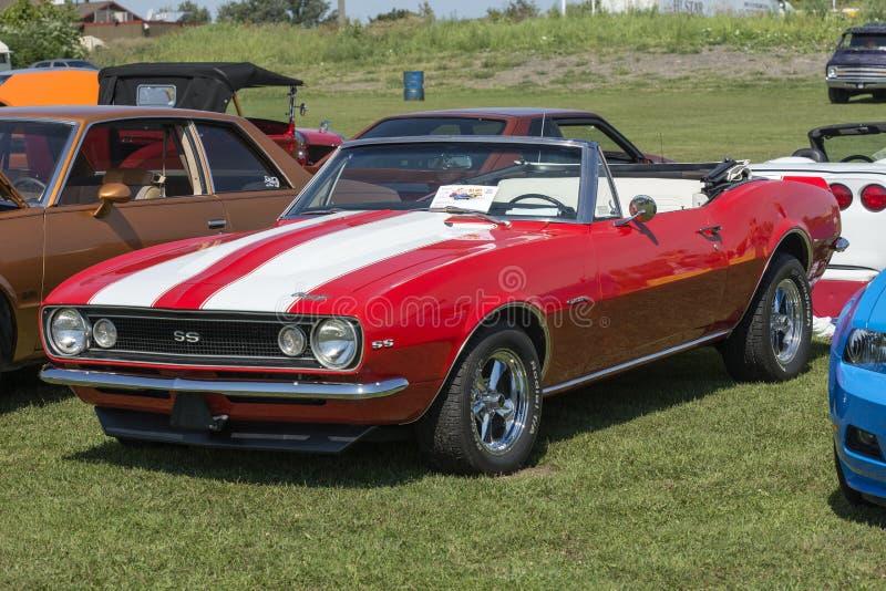 Convertible de Chevrolet Camaro imagem de stock royalty free