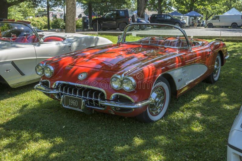 Convertible de Chevrolet Corvette fotografia de stock royalty free
