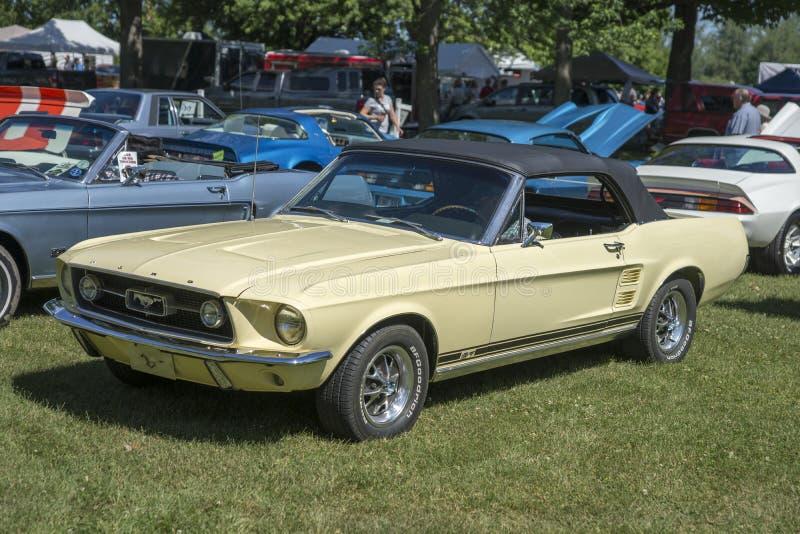 Convertible do mustang de Ford fotos de stock
