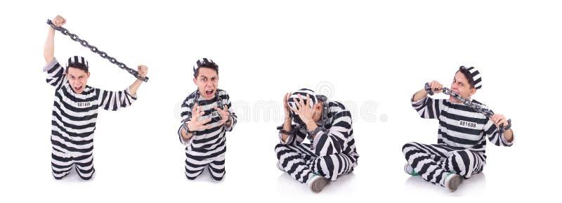 Convicto divertido aislado en el blanco fotografía de archivo libre de regalías