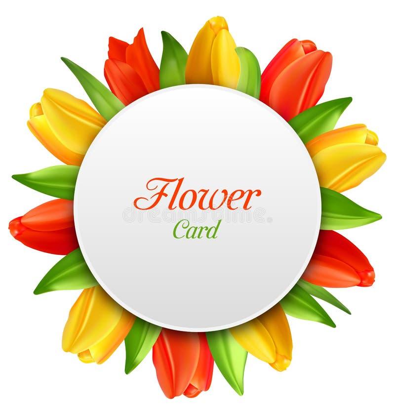 Convite com flores das tulipas, cartão da mola para o dia das mulheres ilustração royalty free
