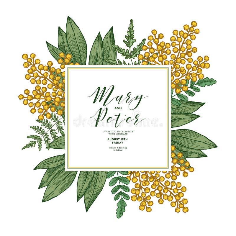 Convite do casamento da flor da mimosa Molde do design floral do vintage ilustração stock