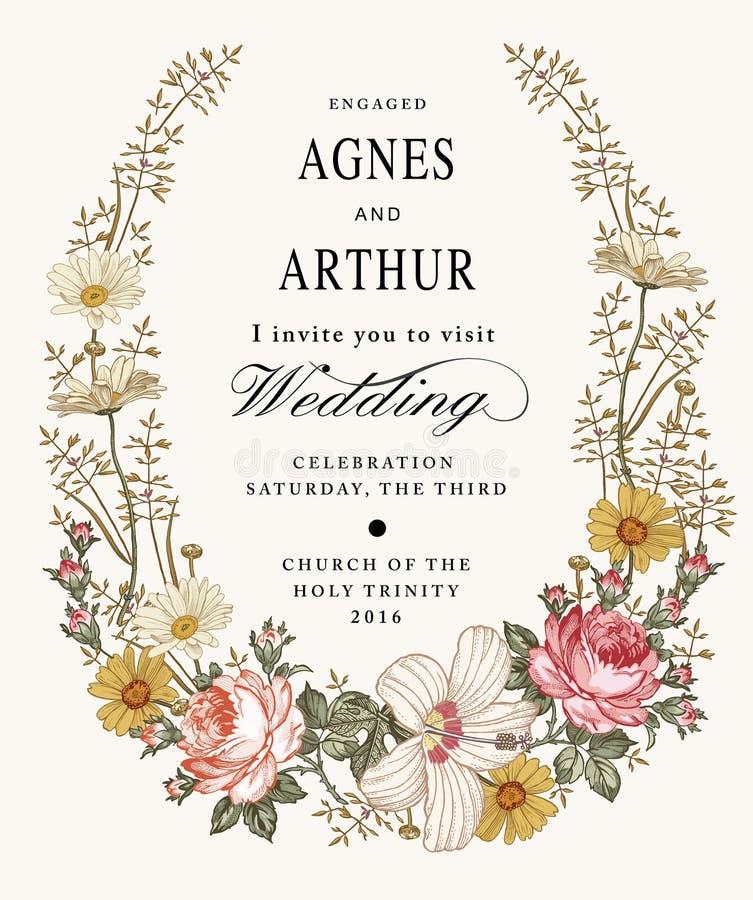 Convite do casamento Malva bonita do hibiscus de Rosa da camomila das flores Cartão do vintage Quadro Gravura do desenho ilustração do vetor