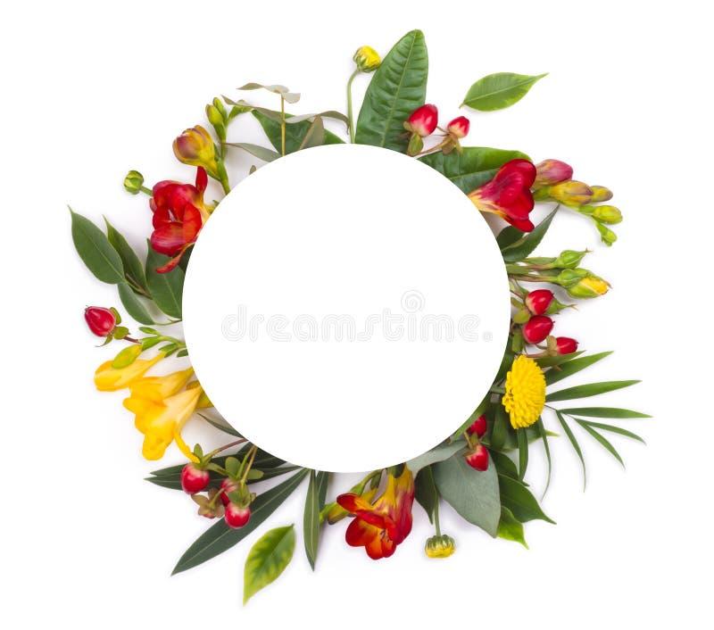 Convite floral ou projeto de cartão dos cumprimentos com espaço redondo da cópia imagem de stock