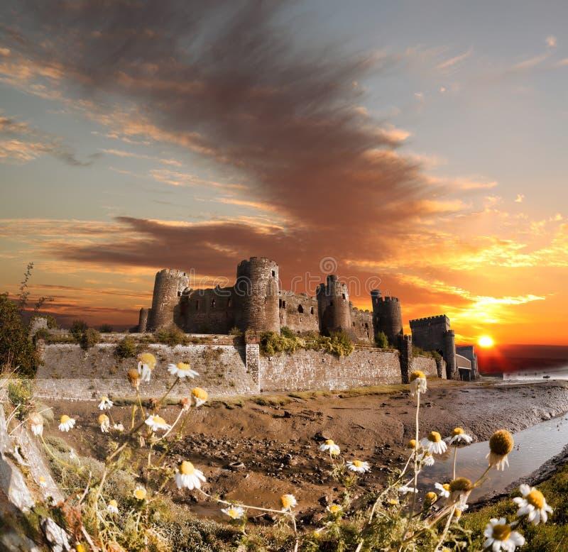 Conwy城堡在威尔士,英国, Walesh系列防御 库存照片
