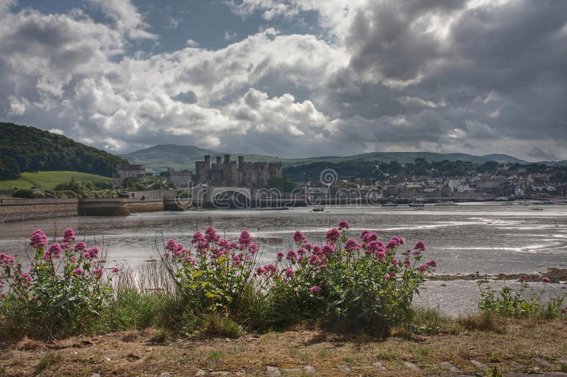 Download Conwy Castle stock photo. Image of estuary, sand, wales - 14852186