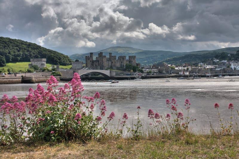 Download Conwy Castle stock photo. Image of north, ocean, estuary - 14852232