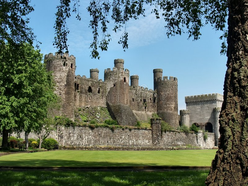 Download Conwy Castle stock photo. Image of summer, medieval, wales - 5346564