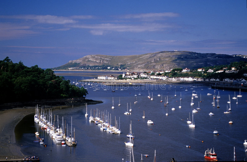Download Conwy Harbour stock image. Image of trees, orderly, great - 3366295
