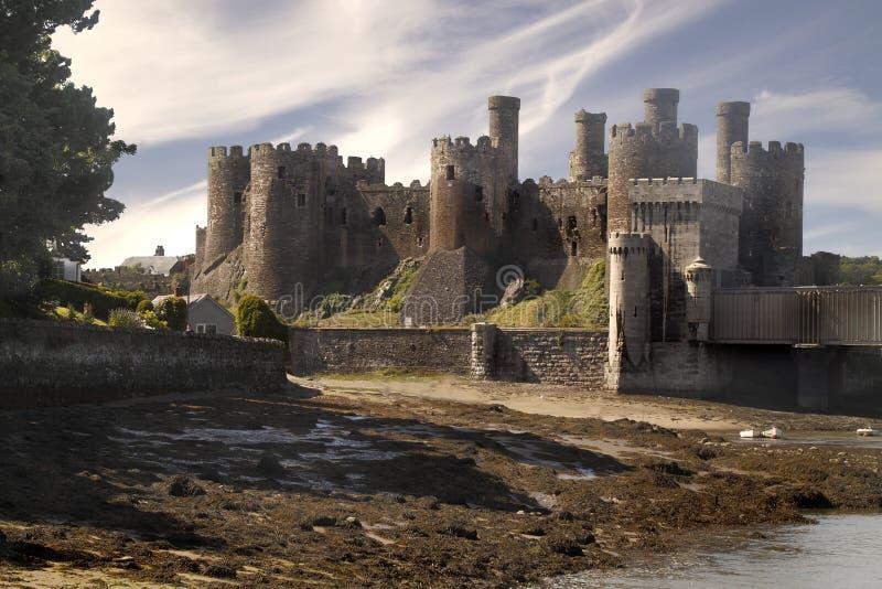 Conwy slott fotografering för bildbyråer