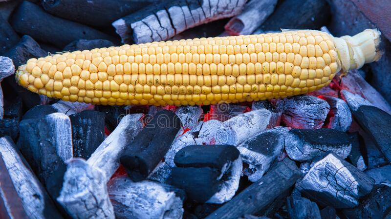 Cooking a cob stock photo