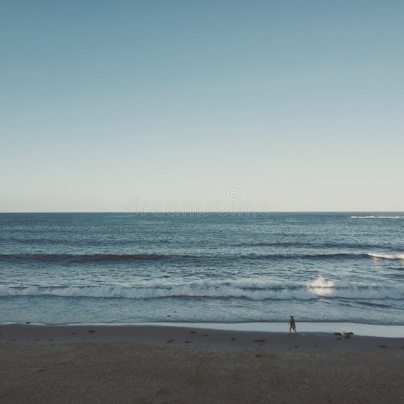 Coogee海滩 免版税库存图片