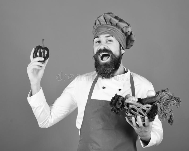 Cook with cheerful face in burgundy uniform holds pepper. And vegetables in wicker bowl. Green grocery concept. Man with beard on blue background. Chef holds stock image