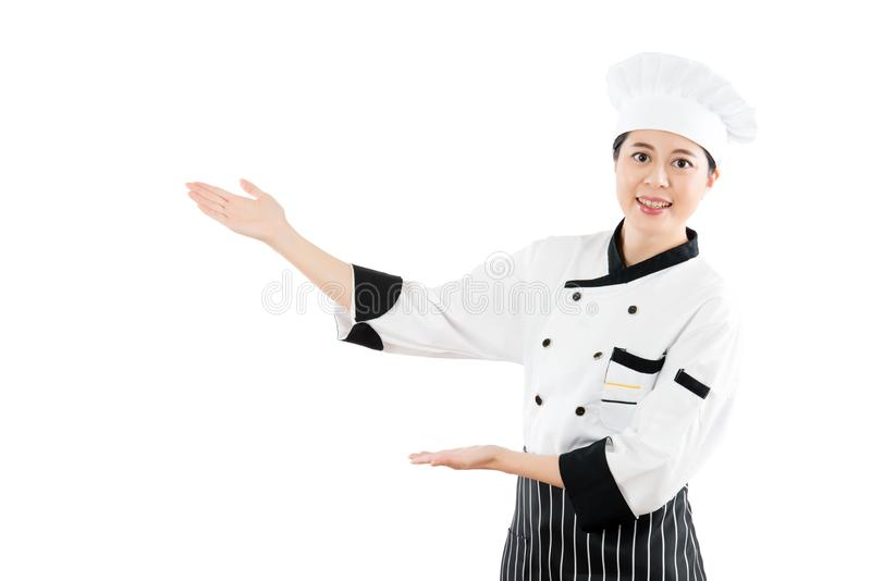 Cook or chef showing and presenting. Hands gesture. Multicultural Asian model. isolated on white background. profession and industry job concept stock images