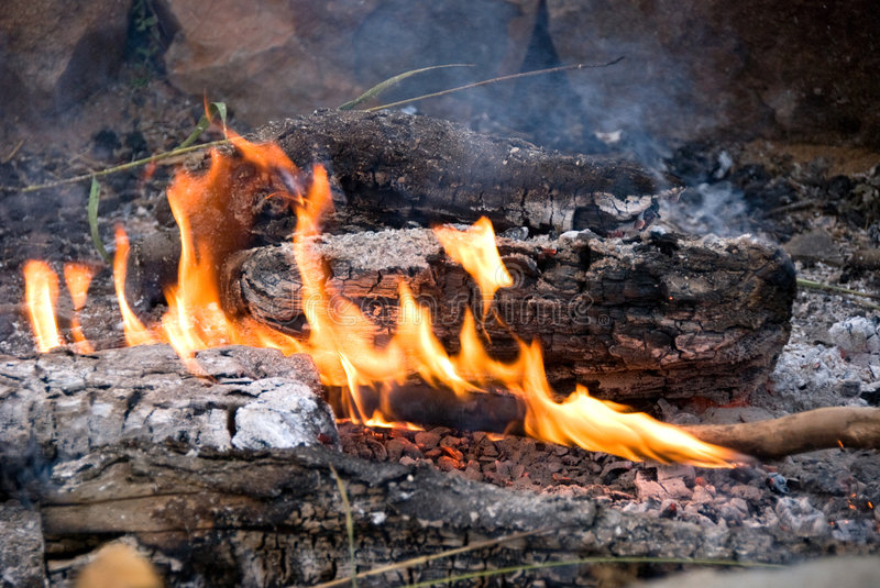 Download Cook out fire stock image. Image of sparks, smoke, nature - 6031359