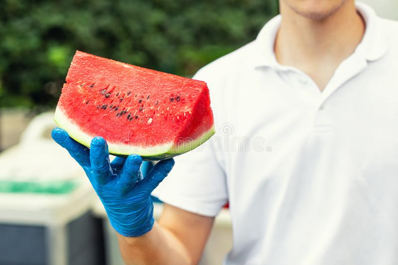 Cook in rubber gloves holding in hand and offering big piece of fresh tasty juicy sliced watermelon for hotel guests at tropical royalty free stock photo