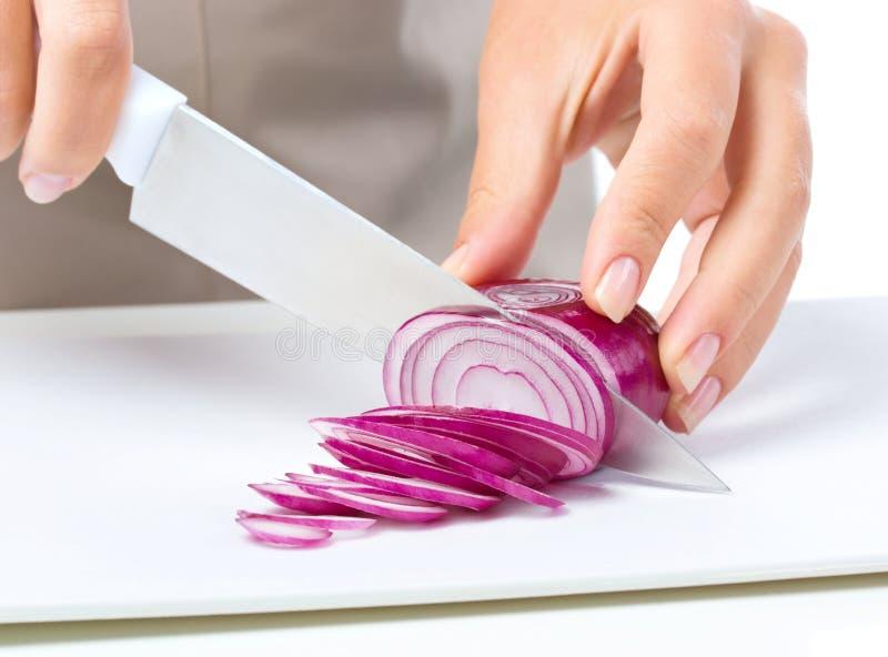 Cook sieka cebuli zdjęcie stock